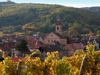 Riquewihr on the wine road